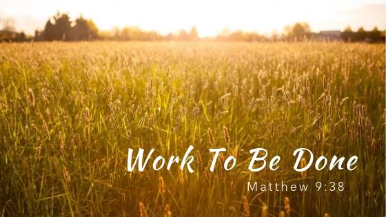Matthew 9:38